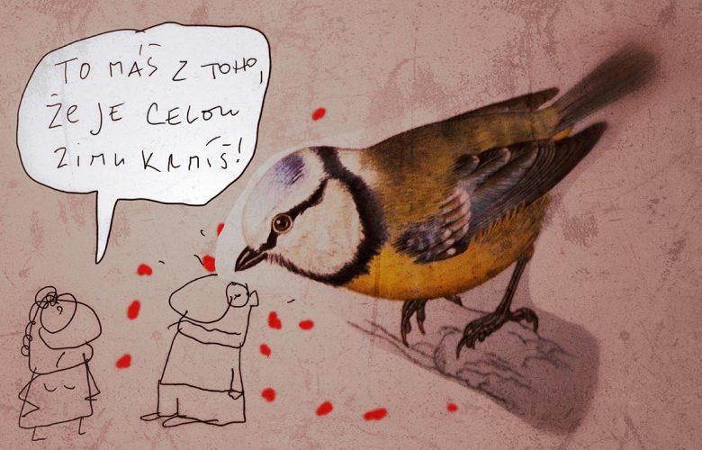 ptáci kurva